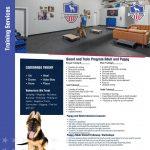 dog-training-flyer